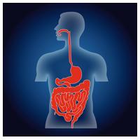 homöopathische darmsanierung